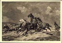 Künstler Ak Roloff, Alfred, Flüchtende Pferde, HDK 306, Pferde