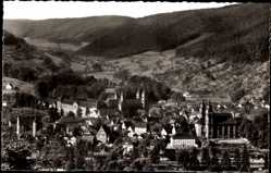 Postcard Amorbach Unterfranken, Blick in das Mudautal, Stadtpanorama