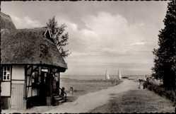 Postcard Dümmer Kreis Ludwigslust Parchim, Blick auf den Dümmer See