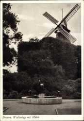 Postcard Hansestadt Bremen, Wallanlage mit Windmühle, Hirschgruppe