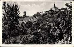 Ansichtskarte / Postkarte Radebeul Sachsen, Blick auf das Berggasthaus Spitzhaus, Aussichtsturm