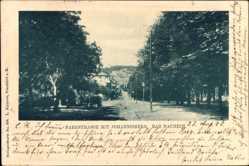 Postcard Bad Nauheim im Wetteraukreis Hessen, Parkstraße mit Johannisberg