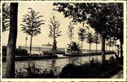 Postcard Crikvenica Kroatien, Promenade am Hafen, Regen, Palme