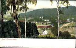 Postcard Bad Liebenstein im Wartburgkreis, Gesamtansicht, Birke