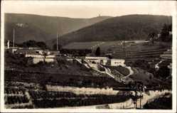 Postcard Neustadt an der Weinstraße, Terrasse Dr. Welsch, Blick auf Weinberge