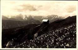 Postcard Slowenien, Spodnja koca na Golici, Schutzhütte, Gebirge