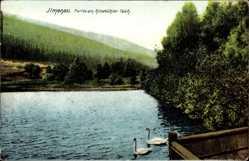 Postcard Ilmenau im Ilm Kreis Thüringen, Partie am Ritzebühler Teich, Schwäne