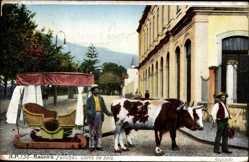Postcard Funchal Insel Madeira Portugal, Carro de bois, Ochsenschlitten