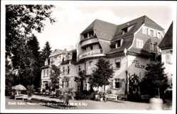 Postcard Hinterzarten Schwarzwald, Hotel Adler, Palmen, Sitzbänke, Eingang