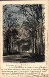 Postcard Alkmaar Nordholland Niederlande, Ronde O., Promenade im Park