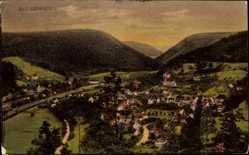 Postcard Bad Liebenzell, Stadtpanorama, Talansicht, Berge, Häuser, Straßen