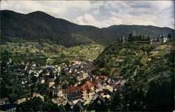 Postcard Hornberg, Stadtpanorama, Burgturm, Waldhang, Felder