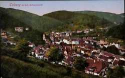Postcard Triberg Schwarzwald, Stadtpanorama, Waldhang, Berge