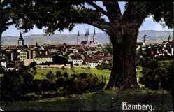 Postcard Bamberg an der Regnitz Oberfranken, Panorama mit Dom