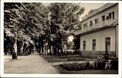 Postcard Bad Windsheim in Mittelfranken Bayern, Kurhaus und Promenadenweg