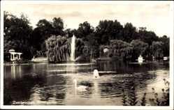 Postcard Zweibrücken in Rheinland Pfalz, Blick in den Rosengarten