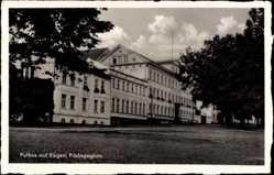 Postcard Putbus Rügen, Blick auf das Pädagogium, Wiese, Vorplatz, Bäume