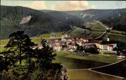 Postcard Beuron Württemberg, Totalansicht der Stadt, Felder