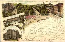 Litho Hannover in Niedersachsen, Herrenhäuser Allee, Schloss, Palmenhaus