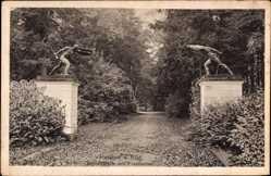 Postcard Putbus auf der Insel Rügen, Blick in den Schlosspark, Fechtertor