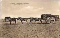 Ak Typische französische Eigenarten, Fuhrwerk, Dreispänner, Pferde