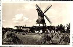 Postcard Westerholz Schleswig Holstein,Blick auf Westerholzmühle,Windmühle, Heuberge