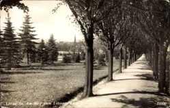Postcard Löbau in Sachsen, Weg zum Löbauer Berg, Bäume, Wiese, Glockenturm