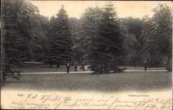 Postcard Kiel in Schleswig Holstein, Spaziergänger in der Forstbaumschule