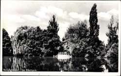 Postcard Sangerhausen im Kreis Mansfeld Südharz, Partie am Stadtpark