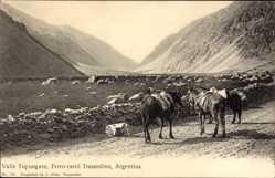 Postcard Valle Tupungato Argentinien, Ferro carril Trasandino, Esel