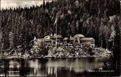 Postcard Tryvannstua Norwegen, Versammlung auf der Insel, Wald, See