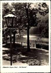 Postcard Attendorn Biggen in Westfalen, Partie am Stausee, Laterne