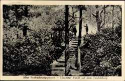 Postcard Burrweiler, Alter Beobachtungsposte, Höhcster punkt auf dem Teufelsberg