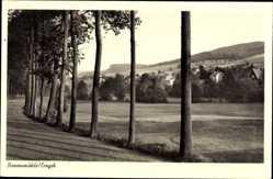 Postcard Rechenberg Bienenmühle Erzgebirge, Allee, Junge Bäume, Ort