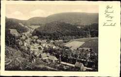 Ak Bad Grund im Harz, Blick vom Knesebeck, Panorama