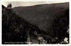 Postcard Geiersthal Lichte im Thüringer Schiefergebirge, Ort, Wälder