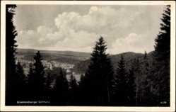 Postcard Güntersberg Harzgerode im Harz, Fernblick zum Ort, Wald, Berge