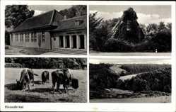 Postcard Mettmann Nordrhein Westfalen, Neandertal, Denkmal, Landschaft, Wisente