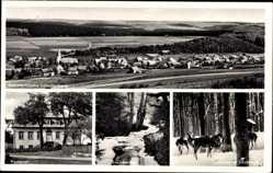 Postcard Scharfenberg Brilon im Hochsauerlandkreis, Totale, Pastorat, Steinbecke