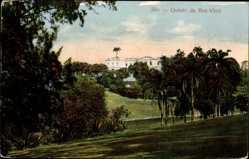 Postcard Rio de Janeiro Brasilien, Quinta da Boa Vista, Palmen, Gebäude