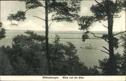 Postcard Wittenbergen Kreis Steinburg, Blick auf die Elbe, Salondampfer