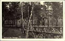 Ak Świebodzin Schwiebus Ostbrandenburg, Gruß aus dem Tiborlager