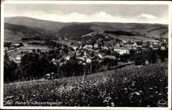 Ak Duszniki Zdrój Bad Reinerz Schlesien, Panorama der Stadt, Feld
