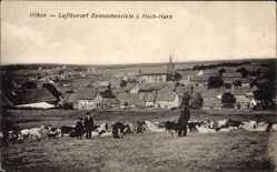Postcard Benneckenstein Oberharz am Brocken, Höhen, Kuhherde, Panorama