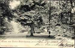 Ak Berlin Pankow Niederschönhausen, Partie bei der neuen Brücke im Schlosspark