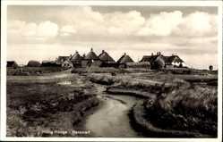Postcard Hallig Hooge in Nordfriesland, Hanswarft, Ebbe, Reetdächer
