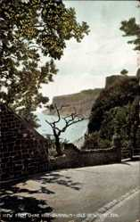Postcard Shanklin Isle of Wight South East, View from Chine Hill, street