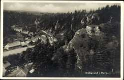 Postcard Rübeland Oberharz am Brocken, Blick auf den Ort, Felsen, Wald