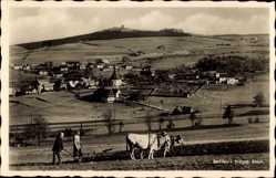 Ak Seiffen im Erzgebirge, Bauern mit Rindern bei Feldarbeit, Ort