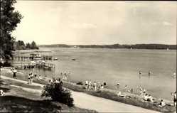 Postcard Seelust Luftkurort Plau am See, Partie am Plauer See, Badende Menschen